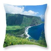 Waipio Valley Lookou Throw Pillow
