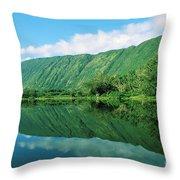 Waipio Valley Stream Throw Pillow