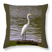Wait And Rest Throw Pillow