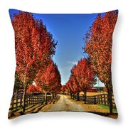 Wait Until We Are Full Grown Throw Pillow