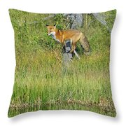 Waiting By The Water Throw Pillow