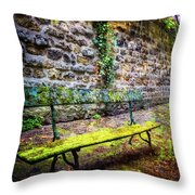 Waiting Throw Pillow by Debra and Dave Vanderlaan