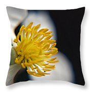 Waiting For A Bee Throw Pillow