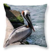 Waiting For A Fish - 2 Throw Pillow