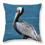 Waiting For A Fish - 3 Throw Pillow