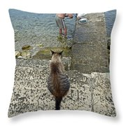Waiting For A Meal Throw Pillow