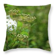 Waiting For Bloom Throw Pillow
