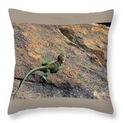 Waiting For Bugs Throw Pillow