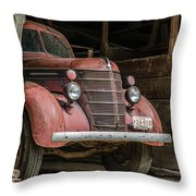 Waiting For Harvest Time Throw Pillow