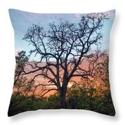 Waiting For Life Throw Pillow