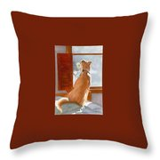 Waiting For Master Throw Pillow