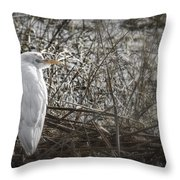 Waiting For Opportunity Throw Pillow