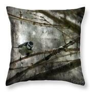 Waiting For Springtime Throw Pillow
