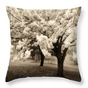 Waiting For Sunday - Holmdel Park Throw Pillow by Angie Tirado