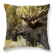 Waiting For The Challengers Throw Pillow by Sandra Bronstein