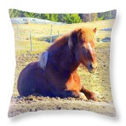 Waiting For The Green Grass To Grow Around My Bed  Throw Pillow