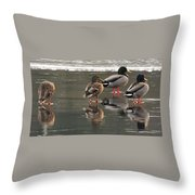Waiting For The Thaw Throw Pillow