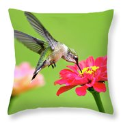 Waiting In The Wings Hummingbird Square Throw Pillow