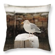 Waiting Out The Snow Throw Pillow