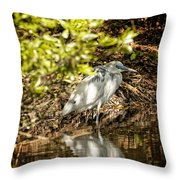 Waiting To Be Blue Throw Pillow
