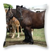 Waiting To Work Throw Pillow