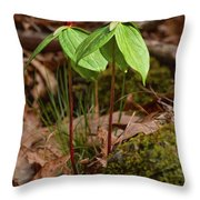 Wake Robin Trillium Throw Pillow