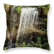 Walcott Waterfall Panorama Throw Pillow by William Norton