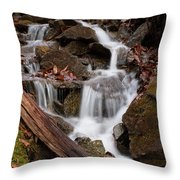 Walden Creek Cascade Throw Pillow