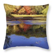 Walden Pond II Throw Pillow