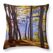 Walden Pond IIi Throw Pillow