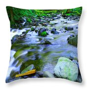 Walk Bridge Over Moffit Creek Throw Pillow