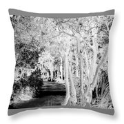 Walk In The Dark Throw Pillow by Dana Patterson