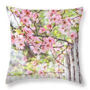 Walk In The Neighborhood Throw Pillow