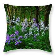 Walk In The Woods Throw Pillow