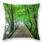 Walk Into The Mist Throw Pillow