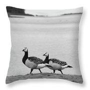 Walk On The Beach. Barnacle Goose Throw Pillow
