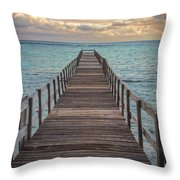 Walk On The Water Throw Pillow