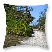 Walk To The Beach Throw Pillow