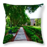 Walk To The Dorm Throw Pillow