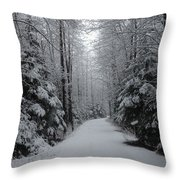 Walk With Frost Throw Pillow
