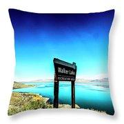 Walker Lake Throw Pillow