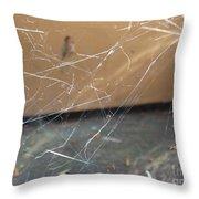 Walkin In A Spider Web Throw Pillow