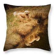 Walking By The Pond Throw Pillow