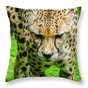 Walking Cheeta Throw Pillow