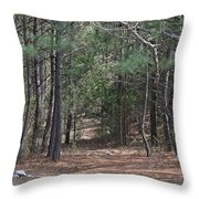 Walking In The Pine Forest Throw Pillow