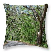 Walking In The Woods Of Amelia Island Throw Pillow