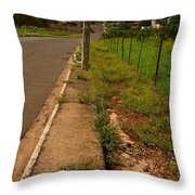 Walking On The Curb Throw Pillow