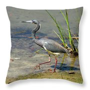 Walking On The Edge Throw Pillow