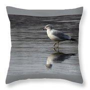 Walking On Water 4850 Throw Pillow