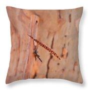 Walking Stick And Pheasant Feather Throw Pillow